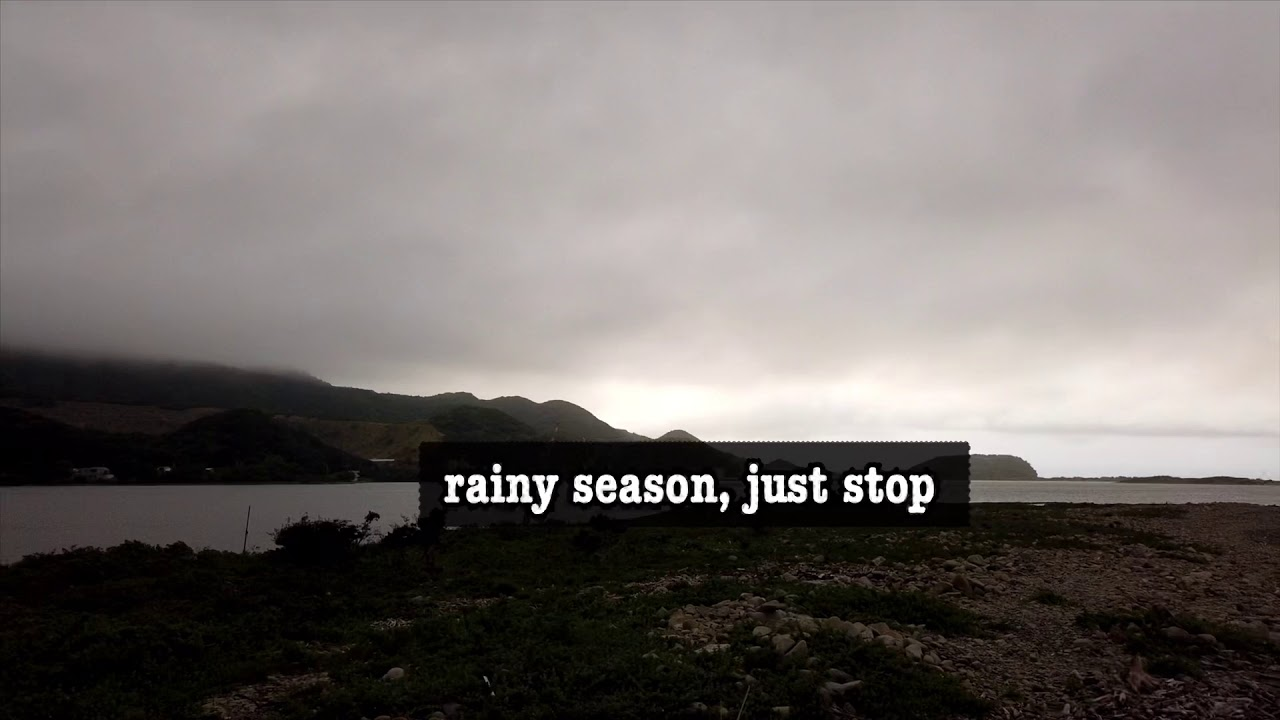 Rainy season, Just Stop.. Moving ants, Ants problems