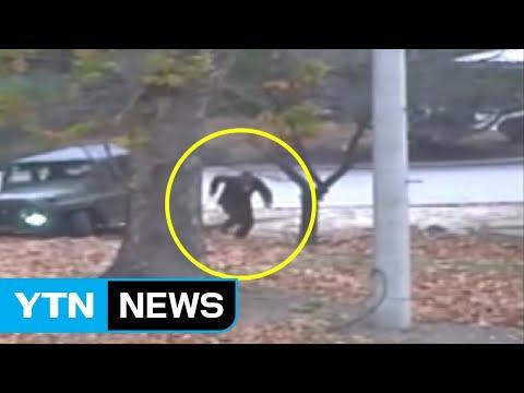 '일촉즉발'...유엔사, JSA 귀순 CCTV 공개 / YTN