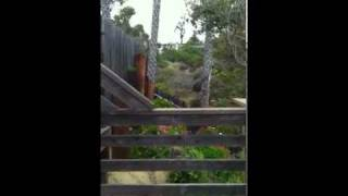 Rustic Loft Cottage 24 at Crystal Cove