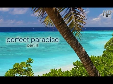 """""""Perfect Paradise"""" (Part II) HD Nature Relaxation Video 1 Hour 1080p Digital Download or Blu-Ray DVD"""
