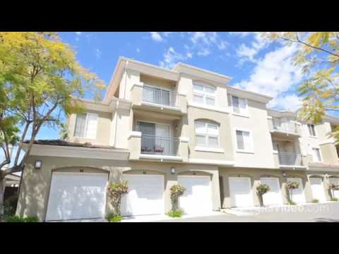 canyon view luxury apartments apartments in san diego ca forrent