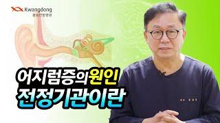06  어지럼증의 원인 전정기관