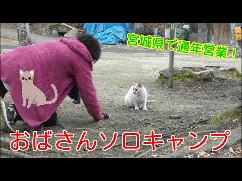 【おばさんソロキャンプ】㊵ 通年営業で猫のいるキャンプ場。おままごとギア紹介。料理、大失敗だけどへっちゃら!そして工作も失敗!