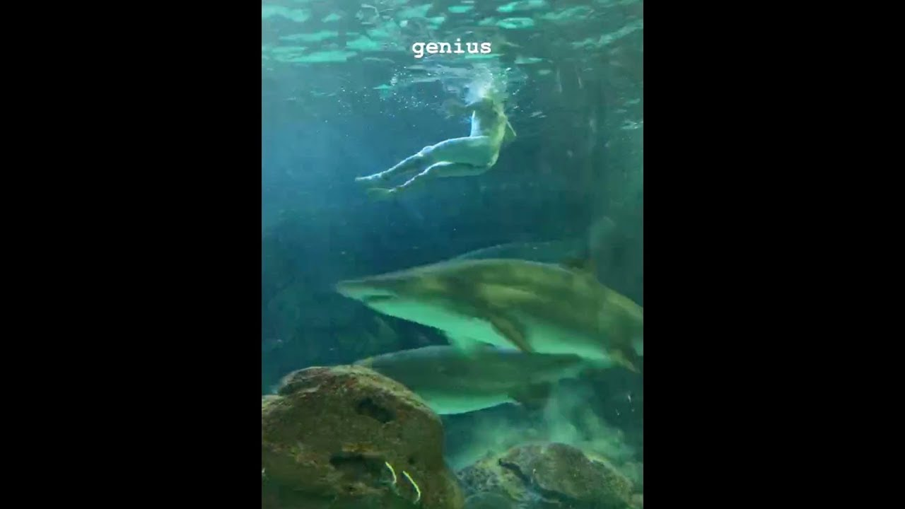Caught on cam: Naked man swims among the sharks at Ripley's