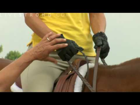 How to Hold the Reins