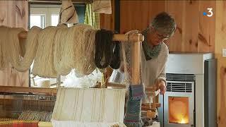 Du fromage de brebis à la laine : l'histoire d'une reconversion réussie dans le Puy-de-Dôme