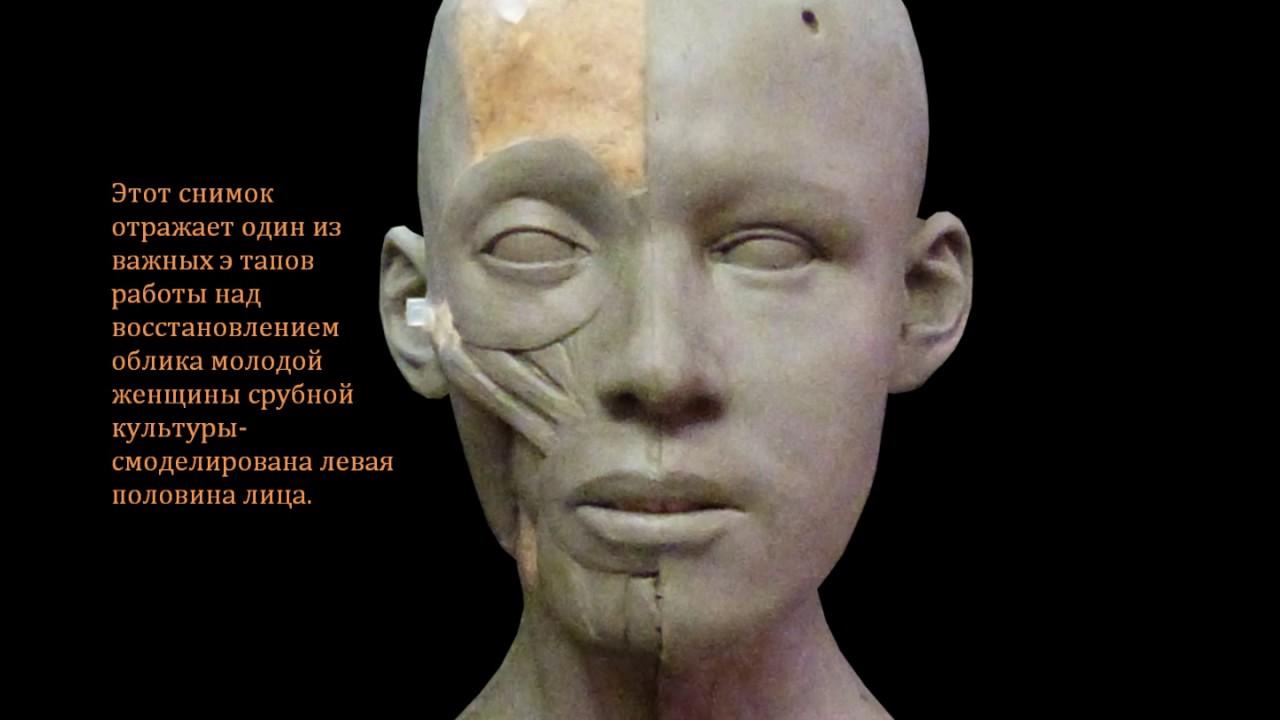 11 янв 2018. Среди прочих — большая коллекция интерактивных копилок, скелет, человеческий череп, ручной протез и настоящий клык кашалота.