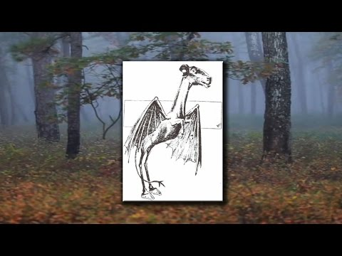 History of a Legend: Mrs. Leeds and The Jersey Devil