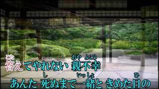 動画制作は 「moguさん」です。有難う御座いました。 1996年、NHK連続テ...