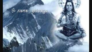 How to Perform Rudrabhishekam(Audio) : Instructions in English Part 2