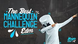 THE BEST MANNEQUIN CHALLENGE   EDM