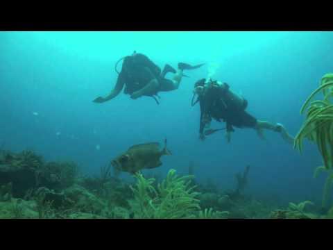 Week 11, 2011 - ( Daily Log, Mar 15 ) Ocean Explorers Dive Center in St. Maarten / St. Martin