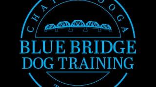 Training Your Dog Not To Cross Boundaries