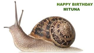 Mituna   Animals & Animales - Happy Birthday