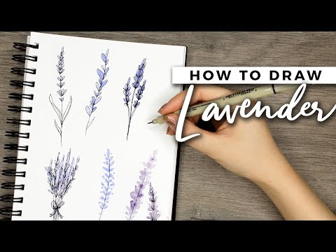 How to Draw Lavender Flowers! | DOODLE WITH ME + Tutorial!