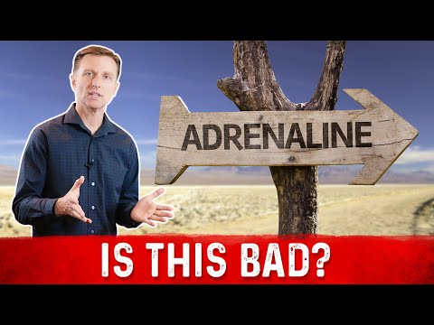 Does Fasting Increase Adrenaline?