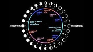 определение клёва рыбы по лунному календарю