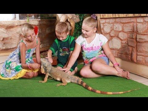 Как открыть контактный зоопарк | Бизнес идея