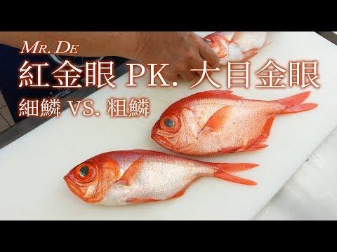 德先生 2019/04/19 金目鯛‧皮刀 - 細鱗 VS. 粗鱗