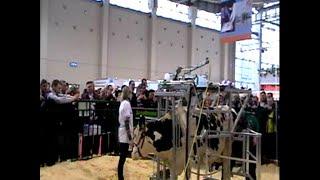 ВВЦ  Специалисты с/х из Балтасинского района на выставке племенного животноводство.2011.