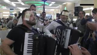 ork.Gorana Todorovica & Borko Radivojevic - Mega san kolo - Muzicka zabava 2016. Krusevac - SARADIS thumbnail