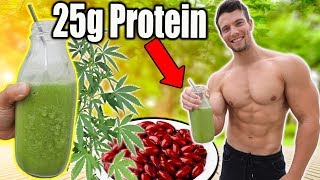 How to Make Cheap Protein Shake without Protein Powder | Low Fat Edition!