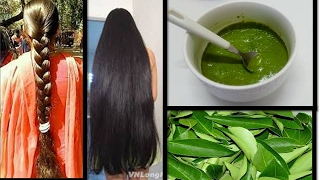 Curry leaf Herbal Hair mask for long, thick hair | Starnaturalbeauties