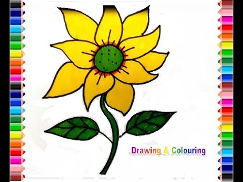 How to draw Sun Flower (Gambar Bunga Matahari)
