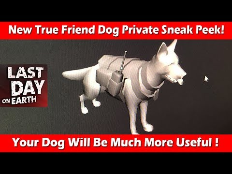 New Upgraded True Friend Dog Private Sneak Peek ! Last Day On Earth Survival