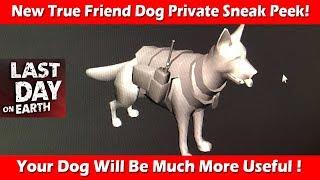 New Upgraded True Friend Dog Private Sneak Peek ! Last Day On Earth Survival