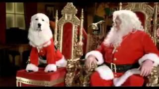 Рождественская пятерка|Santa Buddies