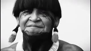 Xingu, o clamor que vem da floresta