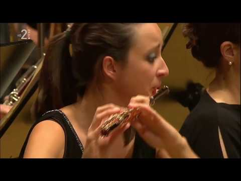 Smetana Vltava RTV Slovenia Symphony orchestra