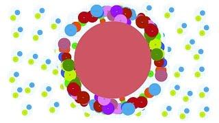 Petri Dish - В поисках красной колючки