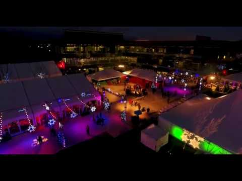 Bos Structures and Tents   Lear Corp 100 Year Anniversary