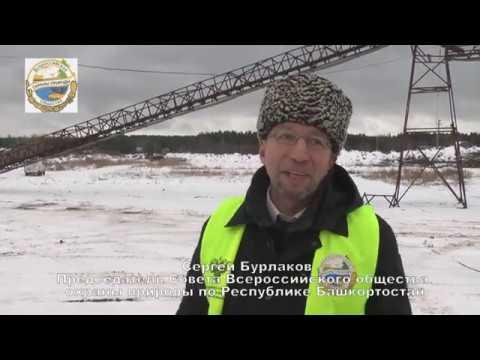 Всероссийское общество охраны природы расследует ситуацию с добычей ПГС в Краснокамском районе РБ.
