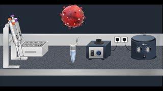 Coronavirus Test: Real time RT-PCR - Animation video