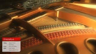 รักเธอเสมอ - อัสนี-วสันต์ | Piano Instrumental (Cover)