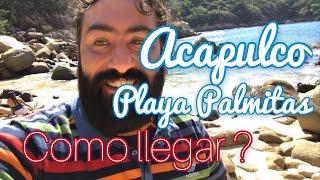 Acapulco Playa Palmitas
