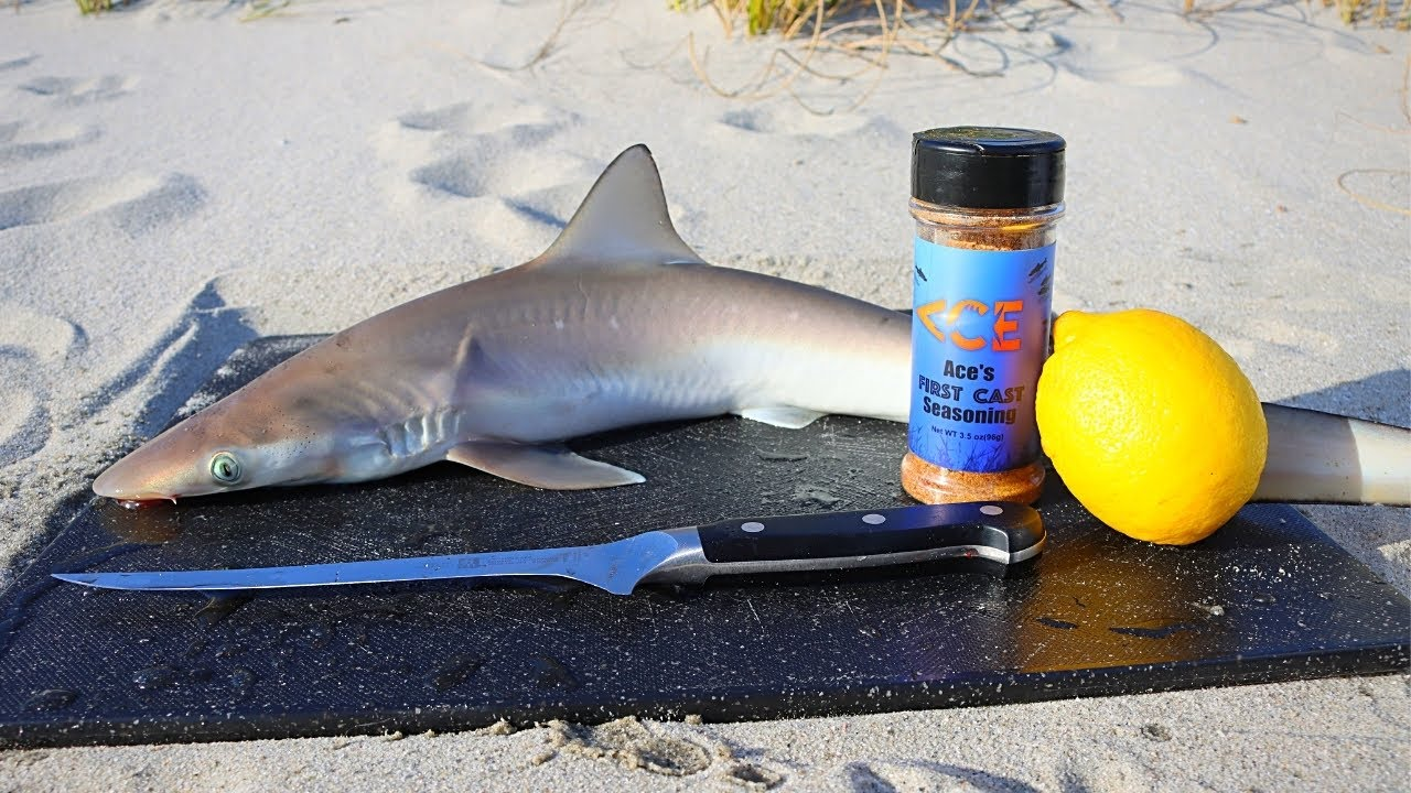 Download Catch and Cook BABY SHARK on the Beach!