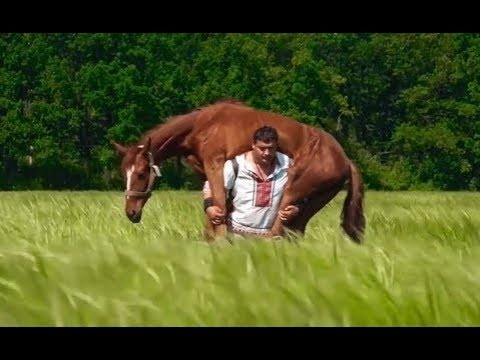 The Man who Lifts Horses: Unconventional Strength