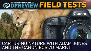 Canon EOS 7D Mark II Field Test: Capturing nature with Adam Jones