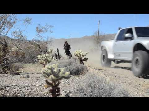 Ranchita to Borrego Trail