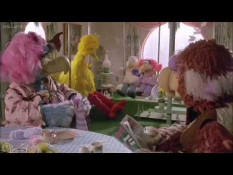 Sesame Street Follow That Bird Big Bird Runs Away