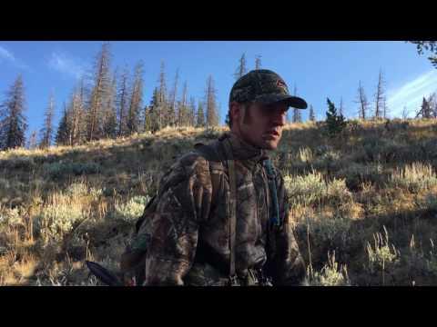 Wyoming Archery Elk Hunt General Area Tag Public Land-2016