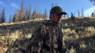 Wyoming Archery Elk Hunt General Area Tag Public Land-2016