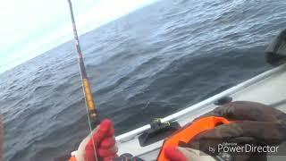 Баренцево Море Териберка КИТЫ Рыбалка