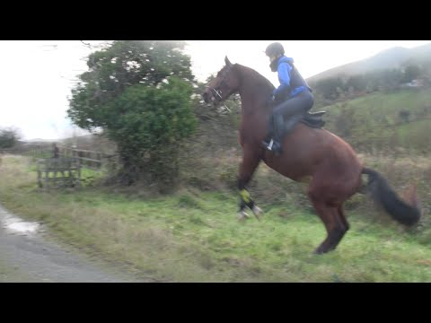 Riding River [Inc. Rear and Fall]