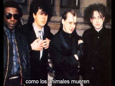 the cure the hanging garden live 84 subtitulada