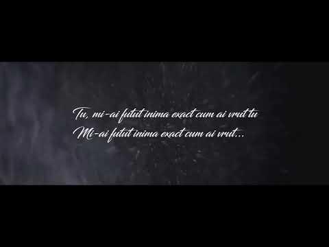 DMC - CUM AI VRUT TU (Lyrics Video)